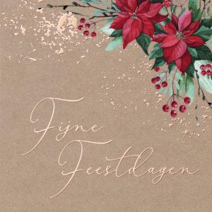 cottonbird kerstkaarten kerstster